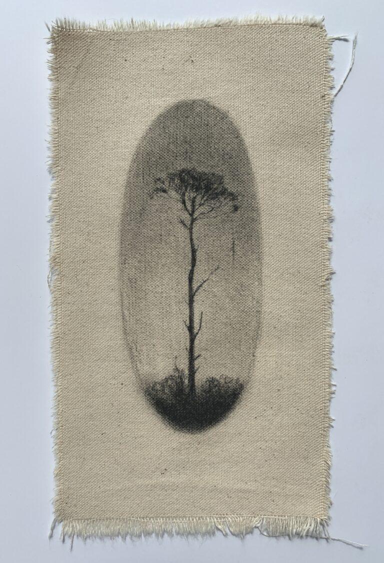 Kara Ffield illustration