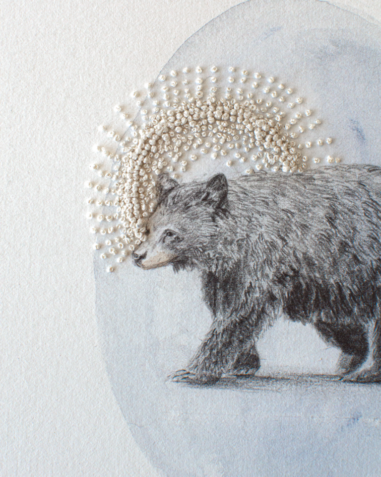 Bear illustration with embroidery