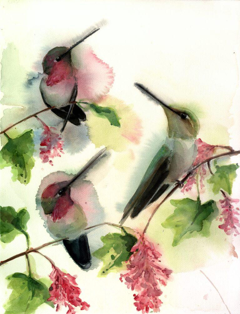Hummingbird Trio